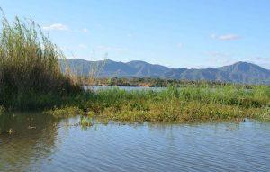 lower zambezi river